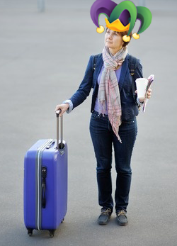 Traveling Fool